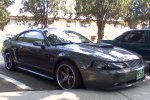 Picture of the Stang.jpg