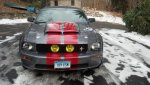 Stang with Pony & Tribar.jpg